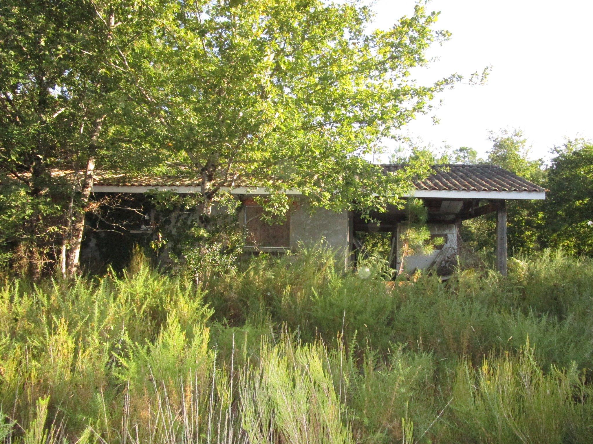 Maison-Villa - Le Barp